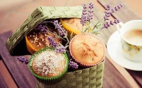 Picture coffee, food, Cup, cake, cappuccino, dessert, food, cup, sweet, cupcakes, coffee, dessert, lavender, cappuccino, lavender, …