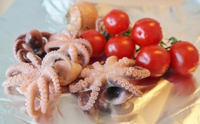 Picture food, vegetables, tomatoes, octopus, seafood, cherry, shellfish