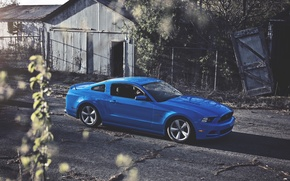 Picture The sun, Mustang, Ford, Blue, Ford, Muscle, Mustang, Car, Blue, Sun, 5.0, Before