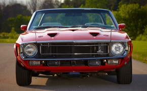 Picture Mustang, Ford, Shelby, GT500, Ford, 1969, Mustang, the front, Muscle car, Convertible, Muscle car, Shelby