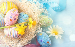 Picture flowers, tape, holiday, eggs, Daisy, Easter, socket, daffodils, decor, Easter