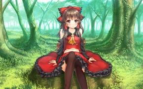 Picture girl, trees, skirt, stockings, blush, sitting, red eyes, touhou, brown hair, hakurei reimu, separate sleeves, …