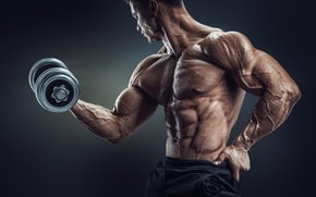 Picture muscles, pose, workout, dumbbell, bodtybuilder