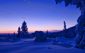 Picture winter, forest, the sky, clouds, snow, trees, sunset, the evening, Norway