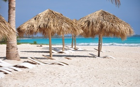 Picture sand, sea, water, landscape, nature, palm trees, the ocean, summer, sunshine, beach, sea, ocean, sunbeds, …