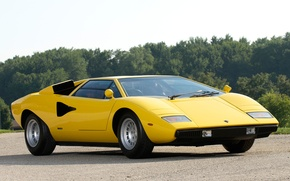 Picture trees, lamborghini, yellow, Lamborghini, Countach, countach lp400, лп400