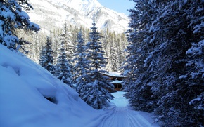 Picture winter, snow, trees, mountains, nature, house, Park, photo, Canada, Fir Banff