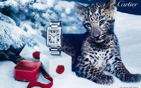 Picture style, box, gift, watch, leopard, Cartier