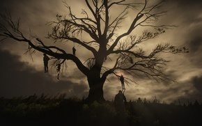 Wallpaper tree, The Witcher 3:Wild Hunt, The Witcher, night, gallows