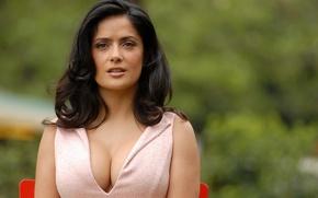 Picture chest, hairstyle, Salma Hayek, Salma Hayek, cleavage