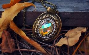 Picture autumn, leaves, stones, stone, pendant, chain, suspension, fallen, metal