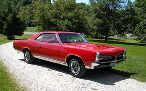 Picture red, Pontiac, GTO, 1967