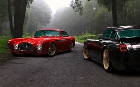 Picture road, forest, trees, two, Ferrari, car, Ferrari, Competition Design, F-340, Gullwing America