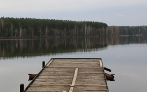 Picture forest, bridge, lake, pond, reflection, overcast, old