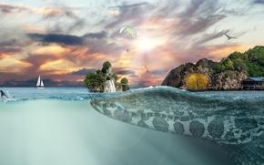 Wallpaper sunset, rocks, crocodile, fantasy, huge, sea, surfer, Seagull, horizon, waterfall, skydivers, yacht, the sky, creative