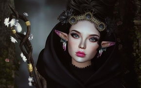 Picture girl, decoration, face, elf, staff, ears