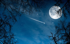 Picture night, comet, the full moon, night, full moon, comet