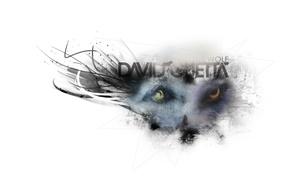 Picture Music, Wolf, David Guetta