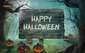 Picture forest, Halloween, pumpkin, Halloween, night, holiday, candles, pumpkin, Happy