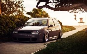 Picture lawn, Volkswagen, Golf, stance