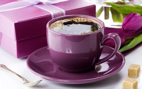 Picture photo, Coffee, Cup, Purple, Food, Gifts, Drinks