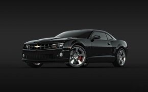 Picture black, Chevrolet, Camaro