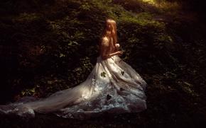 Picture forest, leaves, girl, dress, TJ Drysdale, Secret Place