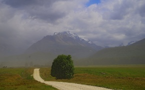 Picture road, field, mountains, fog, tree, New Zealand
