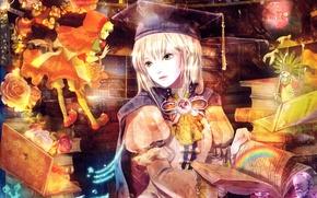 Picture girl, flowers, magic, books, rainbow, little red riding hood, library, art, radu