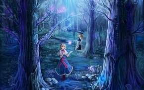 Picture forest, trees, night, nature, girls, branch, magic, butterfly, mushrooms, hat, art, witch, broom, touhou, alice …