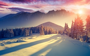 Picture cold, winter, the sky, the sun, clouds, light, snow, trees, mountains, freshness, nature, landscapes, silence, ...