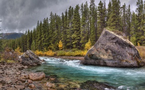 Picture forest, the sky, clouds, mountains, rock, river, stones