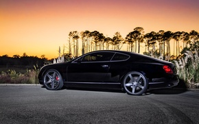 Picture black, coupe, Bentley, Continental GT, black, Bentley, continental