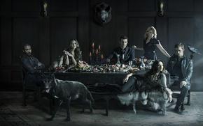 Picture The Vampire Diaries, crow, raven, cat, wolf, Vampire, Joseph Morgan, Phoebe Tonkin, 2014, pig, Daniel …