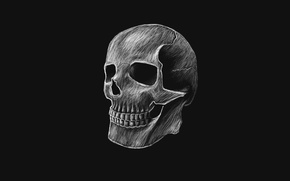 Picture the dark background, skull, head, skeleton