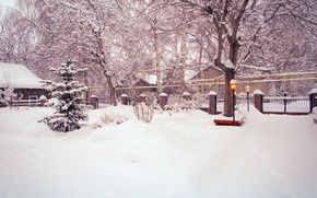 Picture winter, road, snow, trees, street, the fence, tree, yard, lights, tree, the bushes
