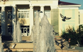 Picture the sun, pigeons, fountain