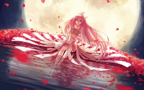 Picture water, girl, flowers, night, reflection, the moon, roses, a month, petals, art, vocaloid, l-kun