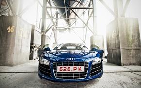 Picture Audi, Auto, Machine, Lights, Plant, The front