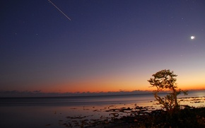 Picture sea, the sky, stars, sunset, tree, the moon, horizon, the car