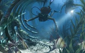 Picture fish, skeleton, divers, podvody