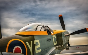 Picture Mustang, fighter, cabin, P-51