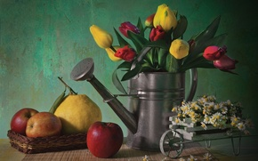 Wallpaper flowers, still, life, colorful, flower, nature, tulips
