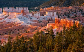 Picture trees, sunset, mountains, rocks, Utah, USA, Bryce Canyon National Park