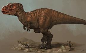Picture Animals, Fiction, Tyrannosaurus, Ancient, Tyrannosaurus, Dinosaurs