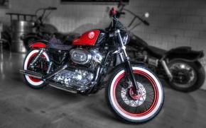 Picture motorcycle, bike, Harley Davidson, bike, custom, harley, f95