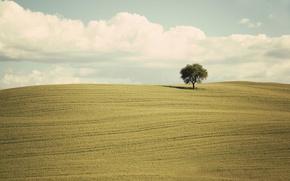 Picture green, clouds, tree, countryside, farm, farmland, countryside scene