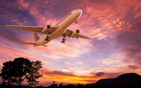 Wallpaper the sky, trees, flight, landscape, the plane, glow, silhouettes, the rise, passenger