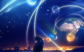 Picture planet, treatment, Cat