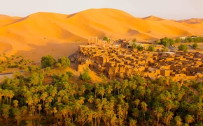 Wallpaper sand, the dunes, the city, palm trees, desert, home, Algeria, Oasis, Tagit